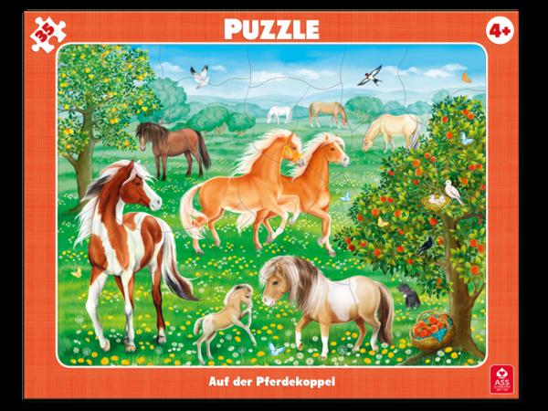 Rahmenpuzzle, Auf der Pferdekoppel